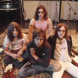 """Dans le passionnant """"Gimme Danger"""", Jim Jarmusch revient sur la folle saga des Stooges, pionniers du punk-rock. © Ed Caraeff"""