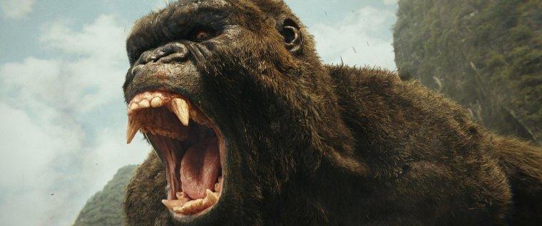L'arrivée des expéditeurs sur Skull Island va bientôt réveiller la colère de Kong, un gigantesque singe. © Warner Bros Entertainment 2016
